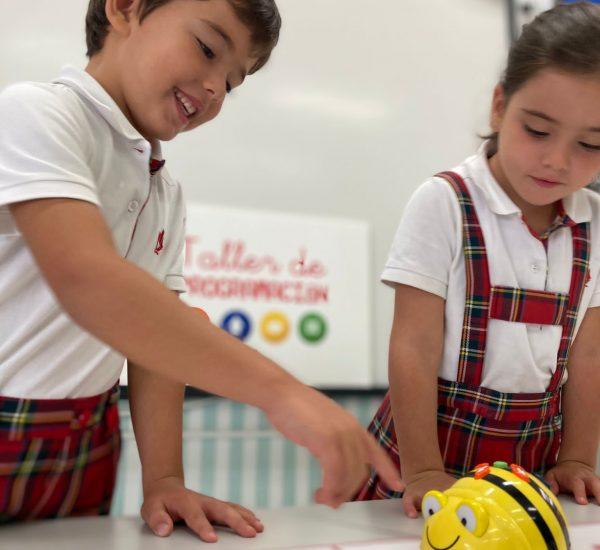 Los alumnos del colegio Torrenova aprenden Robótica educativa desde Infantil hasta Secundaria.